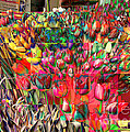 Tulips Of Many Colors - Nyc Markets by Miriam Danar