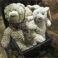 Cuddle Toys by Barbara Orenya