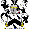 Cullen Coat Of Arms Irish by Heraldry
