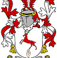 Cullinan Coat Of Arms Irish by Heraldry