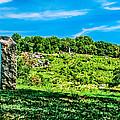 Culp's Hill And Cemetary Ridge Gettysburg Battleground by Bob and Nadine Johnston