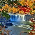 Cumberland Falls In Autumn 2 by Mel Steinhauer