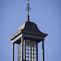 Cupola And Weather Vane by Teresa Mucha