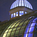 Cupola At Night by Laurel Talabere