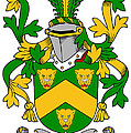 Curdy Coat Of Arms Irish by Heraldry