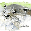 Curious Otter by Karen  Loughridge KLArt