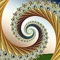 Curl #8 by Kenneth Keller
