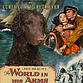 Curly Coated Retriever Art - The World In His Arms Movie Poster by Sandra Sij