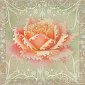 Curlyicue Peach Rose With Flourshis   Square by Debbie Portwood