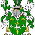 Curtin Coat Of Arms Irish by Heraldry