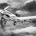 Curtiss P-40 Warhawk 2 by Scott Nelson
