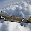 Curtiss P-40 Warhawk Flying Tigers by Adam Romanowicz