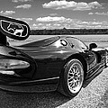 Curvalicious Viper In Black And White by Gill Billington