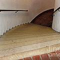 Curved Stairway At Brandywine River Museum by Karen Adams