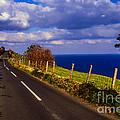 Cushendun Ballycastle Coast Road by Thomas R Fletcher