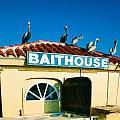 Customers At The Baitshop by Elaine Plesser