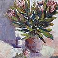 Cut Proteas by Yvonne Ankerman