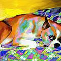 Cute Boxer Dog Portrait Painting by Svetlana Novikova