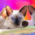 Cute Siamese Kittens Cats  by Svetlana Novikova