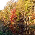Cuyahoga Valley National Park Autumn Color by Nancy Spirakus