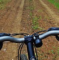 Cycling In The Country by Pixel Productions