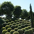 Cypress And Boxwood Garden by Christiane Schulze Art And Photography