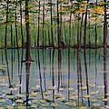Cypress Garden by Richard Goohs