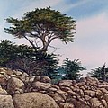 Cypress Garden by Tom Wooldridge