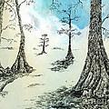 Cypress In Ink by Lizi Beard-Ward
