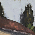 Cypress Tree And Roof Top by Sarah Eiger