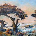 Cypress Tree Coast by Carolyn Jarvis