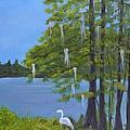 Cypress Trees At Lake Marion by Sally Jones