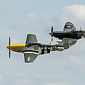 D-day Airshow Duo Spitfire And Mustang by Gary Eason