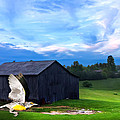Dad's Favorite Bird Meadowlark by Randall Branham