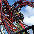 Daemonen - The Demon Rollercoaster - Tivoli Gardens - Copenhagen by Julia Springer