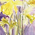 Daffodils by Claudia Hutchins-Puechavy