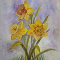 Daffodils by Donna Walsh