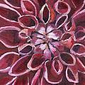 Dahlia - Closeup 2 by Julie Drake