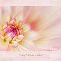 Dahlia Abridge Natalie by John Edwards