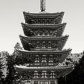 Daigo-ji Pagoda - Japan National Treasure by Daniel Hagerman