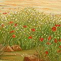 Daisies And Poppies by Angeles M Pomata