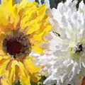 Daisies And Sunflowers - Impressionistic by Marie Jamieson