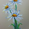 Daisies For You by Hae Kim