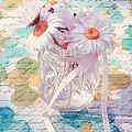 Daisies In Pot 02a - Du Bonheur En Pot by Variance Collections