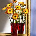 Daisies In Red Vase by Tony Cordoza