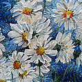 Daisy Cluster by Karin  Dawn Kelshall- Best