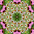 Daisy Daisy Do Kaleidoscope by Kathy Clark