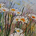 Daisy Dreams by Wendy Provins