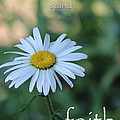 Daisy Faith by Karen Beasley