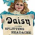Daisy Headache Cure by Mary Evans